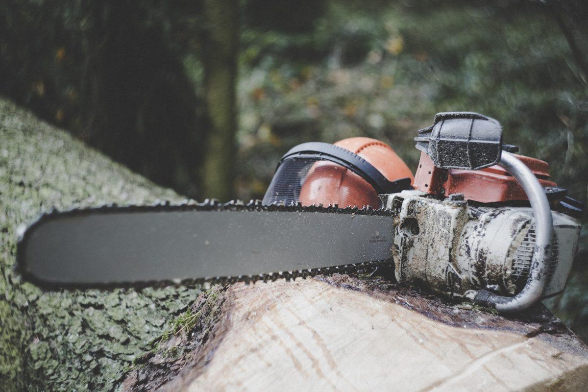 森林作業の安全④ チェーンソー防護ズボンの機能、手入れ、耐用年数